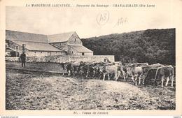 43-CHANALEILLES-DOMAINE DU SAUVAGE-N°R2154-B/0031 - Andere Gemeenten
