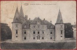 Sohier Wellin Asile Du Sacre Coeur 1920 Province De Luxembourg Luxemburg - Wellin