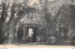 85-SAINT MICHEL EN L HERM-N°2165-A/0195 - Saint Michel En L'Herm