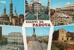 SALUTI DA PADOVA-VIAGGIATA -F.G - Padova