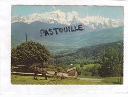 CPSM : 15 X 10,5 -  L'ETE DANS LES ALPES  - 158  -  La Fenaison Face Au Massif Du Mont-Blanc - Non Classés