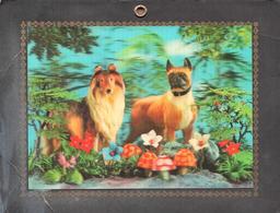 Grande Carte Photo 3 D Kitsch Originale Cartonnée Colley à Poil Long & Boxer En 3 D Sur Fond De Fleurs & Champis - Vieux Papiers