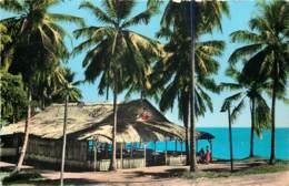 Martinique - La Paillotte De Madiana Plage - Cpsm 9x14 - Martinique