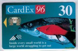 Cardex 96 - Tirage 1.000 Ex- Voir Scans - Estonie
