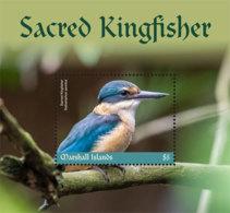 Marshall Islands   2019 Fauna   Sacred Kingfisher   I201901 - Marshall Islands
