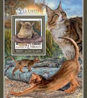 Djibouti 2016  Fauna  Cats - Djibouti (1977-...)
