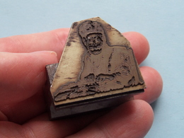 3 Stempels / Stamps ( Zwaar > In Ijzer / Iron ) HORECA > Lion > ?....... Heavy ( See / Voir / Zie Photo ) ! - Cachets