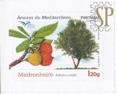 Portugal 2019 Algarve Medronho Laranjeira Medronheiro Fraise Madroño Strawberry Tree Arbres  Méditerranée Flore EUROMED - Fruits