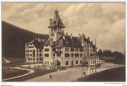 SEMMERING:  HOTEL  ERZHERZOG  JOHANN  -  NACH  DEUTSCHLAND  -  KLEINFORMAT - Hotels & Gaststätten