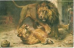 Leone E Leonessa, Riproduzione Da Orig., Reproduction, Illustrazione, (E01) - Leoni
