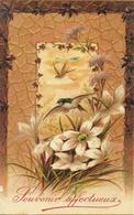 """Rondini, """"Souvenir Affectueux, Riproduzione Da Orig., Reproduction, Illustrazione, (E07) - Uccelli"""