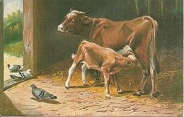 Mucca Con Vitellino E Piccioni, Riproduzione Da Orig., Reproduction, Illustrazione, (E13) - Mucche