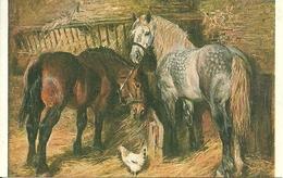 Cavalli Nella Stalla E Gallina, Riproduzione Da Orig., Reproduction, Illustrazione, (E14) - Cavalli