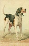 Cane, Chien, Dog, Hund, Riproduzione Da Orig., Reproduction, Illustrazione, (E19) - Cani