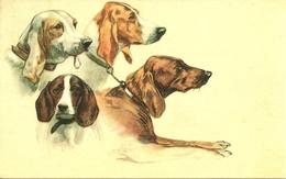 Cani, Chiens, Dogs, Hunde, Riproduzione Da Orig., Reproduction, Illustrazione, (E20) - Cani
