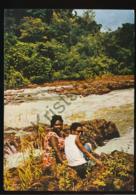 Suriname - Waterval [AA44 3.566 - Surinam