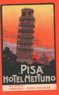 Pisa Hotel Nettuno Bella Cpa Anni '30 Pubblicità - Pubblicitari