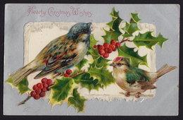 JOYEUX NOEL WEIHNACHTEN CHRISTMAS EMBOSSED Pmk LAKEWOOD NEW JERSEY Sparrow 1901  OLD POSTCARD (see Sales Conditions) - Weihnachten