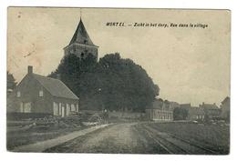 Wortel  Hoogstraten  Zicht In Het Dorp  Vue Dans Le Village - Hoogstraten