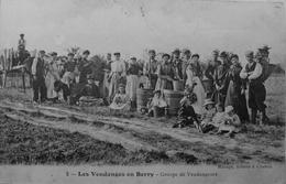 Les Vendanges Du Berry, Groupe De Vendangeurs - France