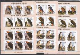 KV257 2002 GUINEA FAUNA BIRDS LES RAPACES HUNTERS EAGLES !!! 6SET(9KB) MNH - Aquile & Rapaci Diurni