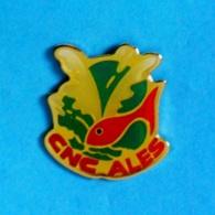 1 PIN'S //  ** CNC / CERCLE NAUTIQUE DES CÉVENNES / ALES / OCCITANIE ** - Natation