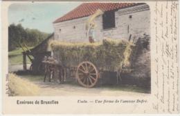 28551g  FERME - CHARRETTE A CHEVAL - AVENUE DE FRE - 1905 -  Uccle - Colorisée - Uccle - Ukkel