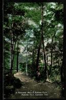 Ref 1319 - Early Canada Postcard - A Favourite Walk Niagara Glen Niagara Falls - Niagara Falls