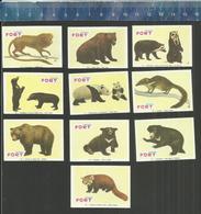FORT Serie 15 - BEER BEREN OURSE OURSES - BEARS GRIZZLY PANDA  ETC... Matchbox Labels Belgium - Boites D'allumettes - Etiquettes