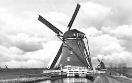 Windmolen Molen Windmill Moulin à Vent  Aarlanderveen     Echte Fotokaart   L 547 - Windmolens