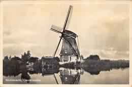 Windmolen Molen Windmill Moulin à Vent   Nichtevecht  Gastermolen   Echte Fotokaart    L 554 - Mulini A Vento