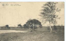 As - Asch - Vijver In De Heide - Etang Dans La Bruyère - Edit. Goossens Et Nysen, Asch - 1921 - Ieper