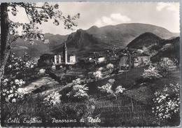 Panorama Di Teolo - Padova - H5482 - Padova