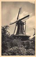 Windmolen Molen Windmill Moulin à Vent   Hattem  De Fortuin    Fotokaart    L 560 - Windmolens