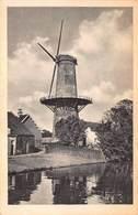 Windmolen Molen Windmill Moulin à Vent   Leiden  Korenmolen De Stier   Echte Fotokaart     L 566 - Windmolens