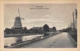 Windmolen Molen Windmill Moulin à Vent  Harmelen Gezicht Op De Rijn Met Molen   L 586 - Windmolens