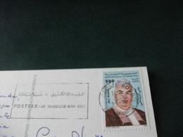 STORIA POSTALE  FRANCOBOLLO TUNISIA HOTEL LES COLOMBES HAMMAMET TUNISIENNE PIN UP - Tunisia
