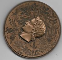 RARE  Grenoble JO D'hivers Par Coeffin Bronze - Autres