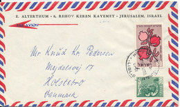 Israel Air Mail Cover Sent To Denmark 1959 - Airmail