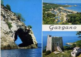 Gargano - Pittoresco - Formato Grande Non Viaggiata – E 13 - Italia