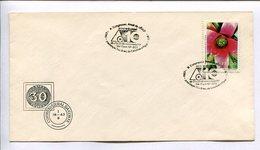 X CONGRESO ANUAL DA ABCP - SEMANA DO PAPEL / SEMAINE DE PAPIER. BRESIL 1977 ENVELOPE FDC -LILHU - Brésil
