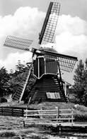 Windmolen Molen Windmill Moulin à Vent  Warmond  Veerpolder    Echte Fotokaart     L 592 - Windmolens