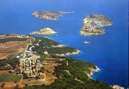Isole Tremiti - S.domino - S.nicola - Cretaccio - Capraia - Formato Grande Non Viaggiata – E 13 - Foggia
