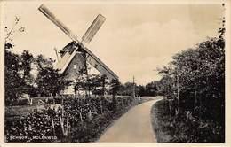 Windmolen Molen Windmill Moulin à Vent  Schoorl Molenweg Echte Fotokaart         L 597 - Windmolens