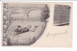 Le Petit Journal - Publicité