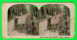 CARTES  STÉRÉOSCOPIQUES - CHILDREN GATHERING FIREWOOD IN STREET OF PANAMA - - Stereoskopie