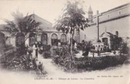 AN38 Cannes, Abbaye De Lerins, Le Cimetiere - Local Publisher - Cannes