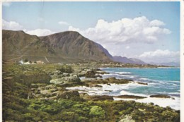AN38 Hermanus, Cape, South Africa - South Africa