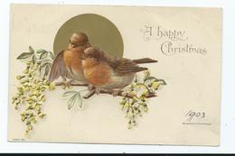 Christmas Robins Postcard Embossed 1903  Postcard     Unposted Artist Signed W In Branch - Navidad