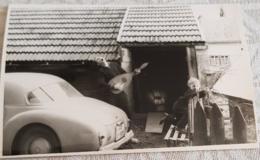 Photo Automobile Ancienne à Identifier Freiburg Breisgau Allemagne 1960 - Automobiles